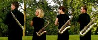 Pyton Sax Kwartet (rug)