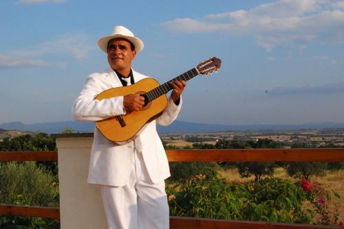 Pedro Solo